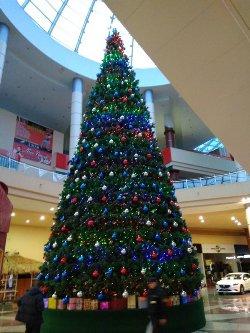 Установка новогодней ели Белгород