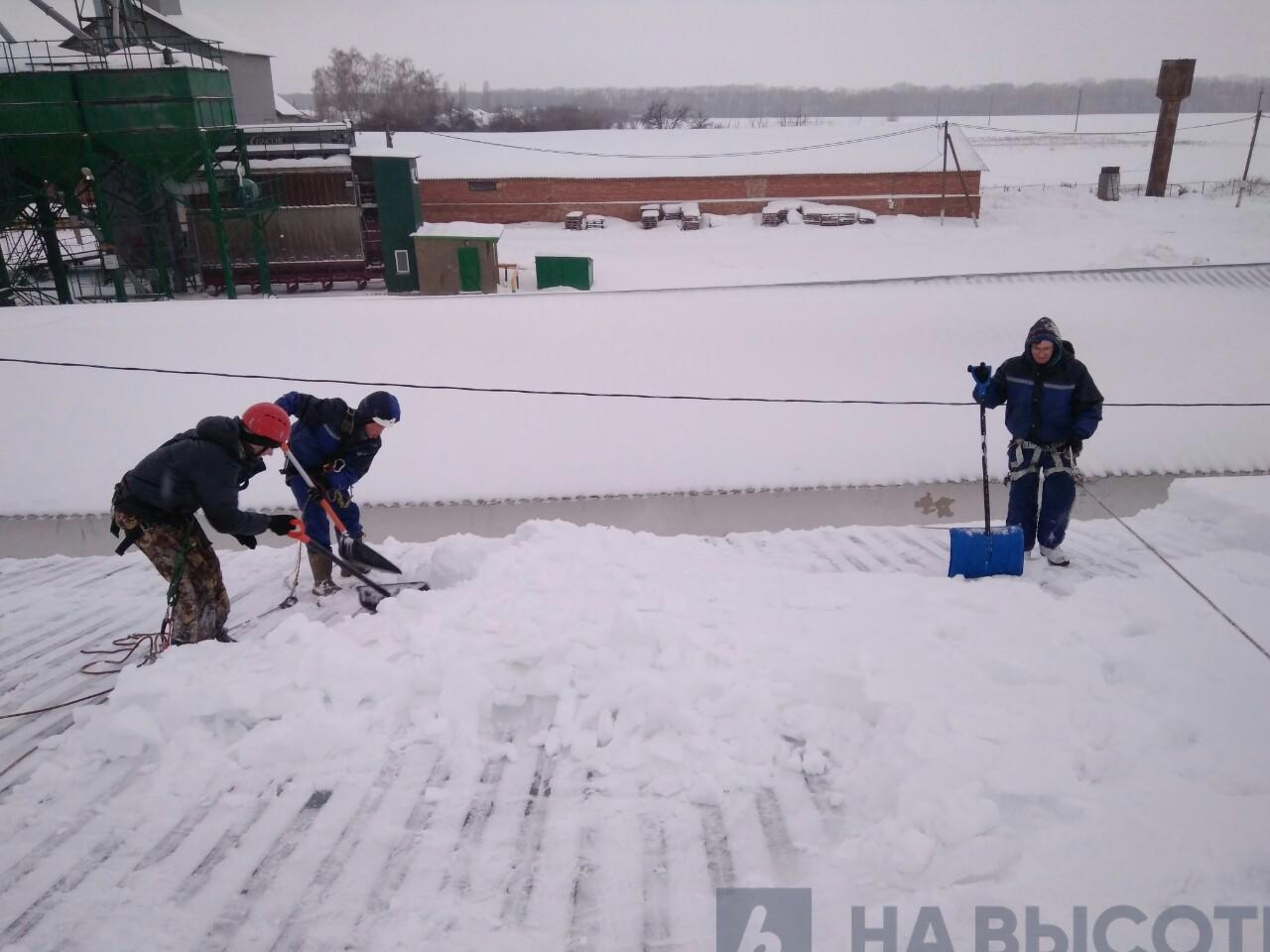 Промышленный альпинизм обучение в москве цена