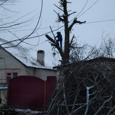 спилить ветки и деревья в Белгороде