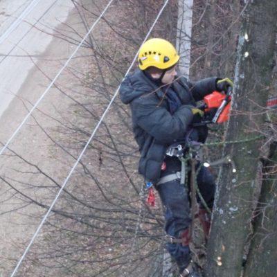 Работа с автовышки,спил деревьев Белгород